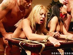 Nikky Thorne a sexy bitch gets hardly boned on her twat from behind and lov...
